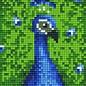 Pixel Hobby Pixelhobby 1 Basisplaat Pauw