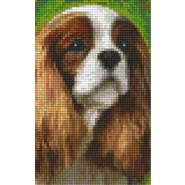 Pixel Hobby Pixelhobby 2 basisplaten King charles