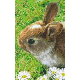 Pixel Hobby seconde plaques de base PixelHobby Lapin
