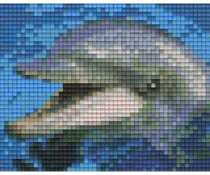 Plaque Pixel 1 Base Dauphin