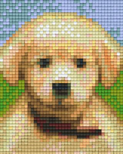 Pixel Hobby 1 Plaque De Base Chiot