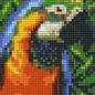 Pixel Hobby Pixelhobby 1 Basisplaat Papagaai