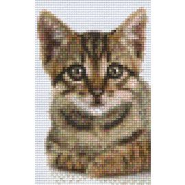 Pixel Hobby Pixelhobby 2 Cat Grundplatten