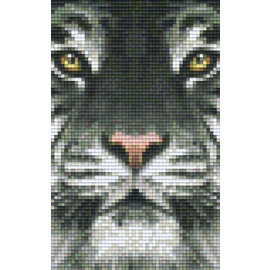 Pixel Hobby Pixelhobby 2 Basisplaten  Tijger