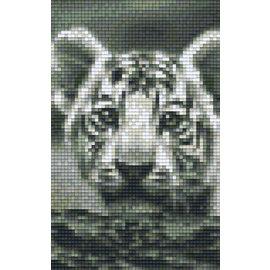 Pixel Hobby Pixel Hobby 2 Grundplatten Tigerjunges