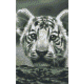 Pixel Hobby Pixelhobby 2 Basisplaten  Tijgerwelp