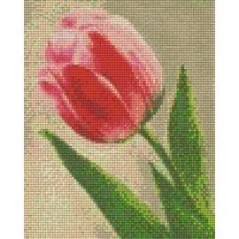 Pixel Hobby pixelhobby 4 plaques de base - Rose