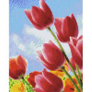 Pixel Hobby pixelhobby 4 Basisplaten - Tulpen