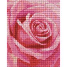 Pixel Hobby pixel hobby 4 plaques de base - Rose 02