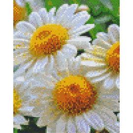 Pixel Hobby pixelhobby 4 Grundplatten - Madelief