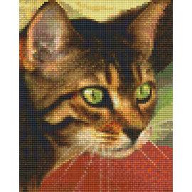 Pixel Hobby Pixel hobby 4 Plaques de base - Cat 02