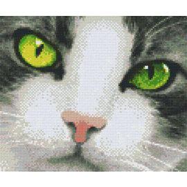 Pixel Hobby Pixelhobby 6 Grundplatten - Cat