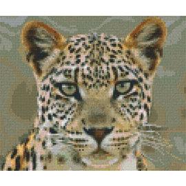 Pixel Hobby Pixelhobby 6 Grundplatten - Arend