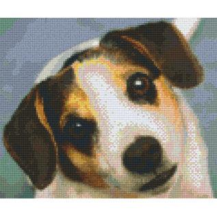 Pixel Hobby Pixelhobby 6 Basisplaten - Hond