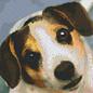 Pixel Hobby Pixelhobby 6 Bodenplatte - Hund