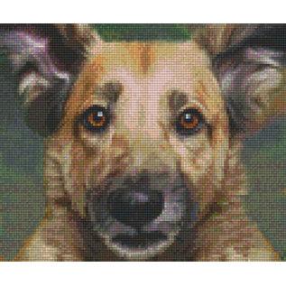 Pixel Hobby Pixelhobby 6 Basisplaten - Hond 02