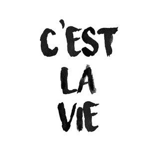Creatief Art Spreukenbordje: C'est la vie | Houten Tekstbord