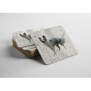 Creatief Art Hond Bordercollie | Houten Onderzetters 6 Stuks