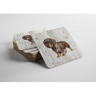 Creatief Art Hond Ruwharige tekkel | Houten Onderzetters 6 Stuks