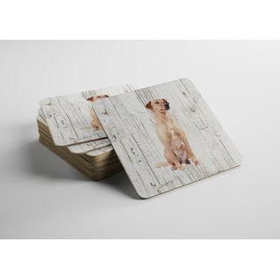 Creatief Art Hond Oostenrijkse Kortharige Pincher   Houten Onderzetters 6 Stuks