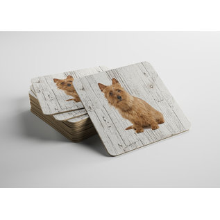 Creatief Art Hond Australische Terier | Houten Onderzetters 6 Stuks