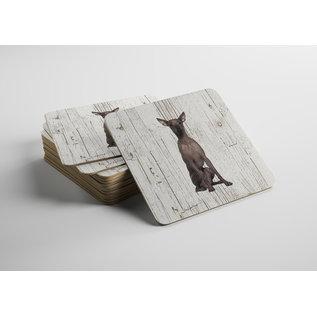 Creatief Art Hond Peruaanse Naakthond | Houten Onderzetters 6 Stuks