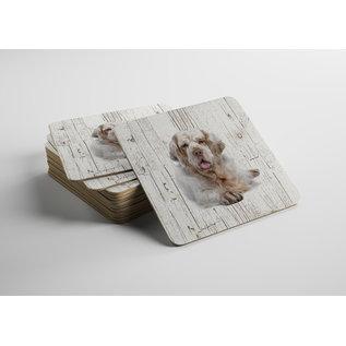 Creatief Art Hond Clumber Spaniel | Houten Onderzetters 6 Stuks