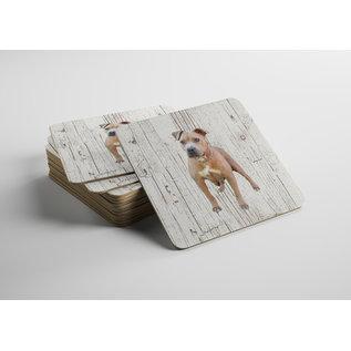 Creatief Art Hond Amerikaanse Stafford | Houten Onderzetters 6 Stuks