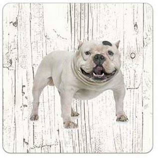 Creatief Art Hond Amerikaanse Bully | Houten Onderzetters 6 Stuks