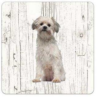 Creatief Art Hond Leeuwhondje | Houten Onderzetters 6 Stuks