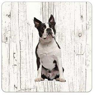 Creatief Art Hond Boston Terriër | Houten Onderzetters 6 Stuks