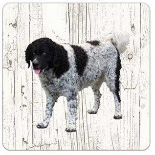 Creatief Art Hond Wetterhoun | Houten Onderzetters 6 Stuks