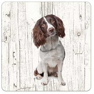 Creatief Art Hond Engelse Springer Spaniel | Houten Onderzetters 6 Stuks