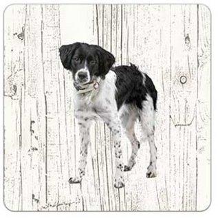 Creatief Art Hond Friese Stabij | Houten Onderzetters 6 Stuks