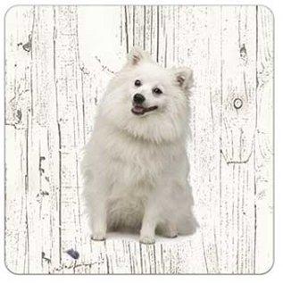 Creatief Art Hond Japanse Spits | Houten Onderzetters 6 Stuks
