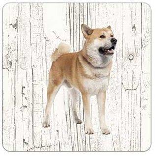 Creatief Art Hond Akita | Houten Onderzetters 6 Stuks