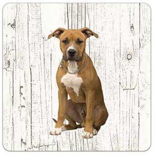Creatief Art Hond American Staffordshire Terrier | Houten Onderzetters 6 Stuks