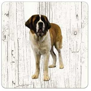 Creatief Art Hond Sint Bernard (langhaar) | Houten Onderzetters 6 Stuks