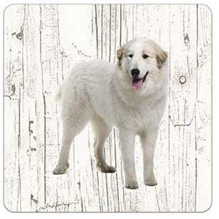 Creatief Art Hond Pyrineese Berghond | Houten Onderzetters 6 Stuks