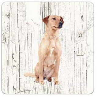 Creatief Art Hond Oostenrijkse Kortharige Pincher | Houten Onderzetters 6 Stuks