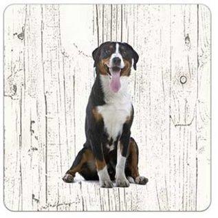 Creatief Art Hond Grote Zwitserse Sennerhond | Houten Onderzetters 6 Stuks
