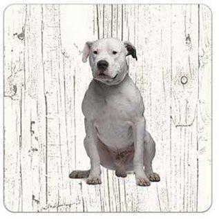 Creatief Art Hond Dogo Argentino   Houten Onderzetters 6 Stuks
