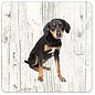 Creatief Art Hond Appenzeller Sennerhond | Houten Onderzetters 6 Stuks