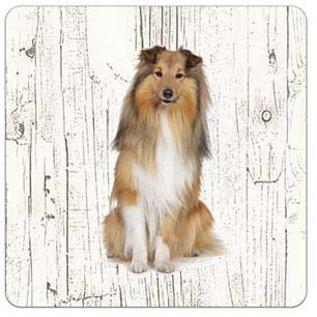 Creatief Art Hond Shetland Scheepdog(Sheltie) | Houten Onderzetters 6 Stuks