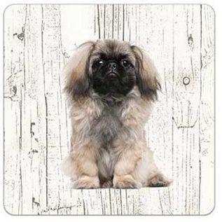 Creatief Art Hond Pekingees | Houten Onderzetters 6 Stuks