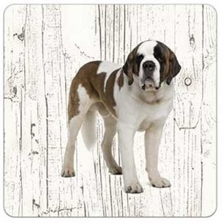 Creatief Art Hond Sint Bernard | Houten Onderzetters 6 Stuks