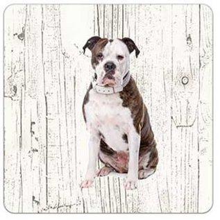 Creatief Art Hond Amerikaanse Buldog | Houten Onderzetters 6 Stuks