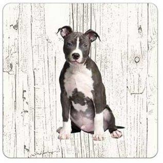 Creatief Art Hond American Staffordshire Terriër | Houten Onderzetters 6 Stuks