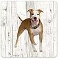 Creatief Art Hond Amerikaanse Staffordshireterriër | Houten Onderzetters 6 Stuks