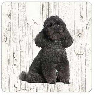 Creatief Art Hond Poedel zwart | Houten Onderzetters 6 Stuks